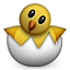 hatching_chick
