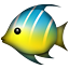 tropical_fish